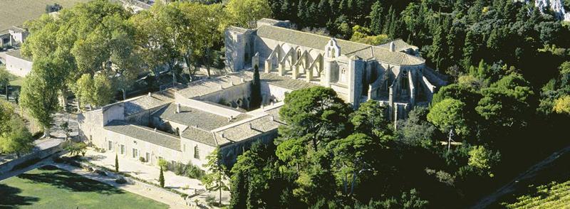 Visitez l'Abbaye de Valmagne, classé Monument Historique, un des plus prestigieux du Languedoc-Roussillon