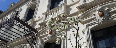 La façade fleurie de l'Hôtel Particulier